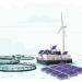 Na Uy: Nuôi cá bằng nguồn năng lượng xanh