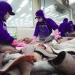 Đưa công nghệ cao vào sản xuất cá tra