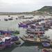 Ngư nghiệp Lý Sơn: Hiện đại để phát triển bền vững