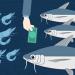Nuôi trồng thủy sản 2019: Tư duy mới, cách làm mới