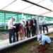 Tôm giống Việt – Úc: Vị thế dẫn đầu từ chất lượng và công nghệ