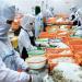Mỹ: Thị trường tôm dần ổn định