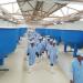 Việt - Úc Sóc Trăng xuất bán lô giống chất lượng cao đầu tiên