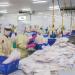 Quy định quy tắc xuất xứ hàng hóa AHKFTA