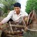 Thủy sản hữu cơ: Xu hướng của thế kỷ 21