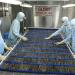 Muốn xuất khẩu phải loại bỏ chất cấm