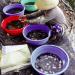Giải pháp nuôi và ương cá nước ngọt mùa hạn mặn