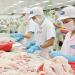 Trợ lực cho ngành hàng cá tra