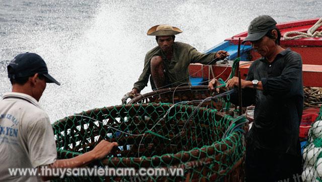 Ở những vùng biển xa đòi hỏi ngư dân phải có kiến thức hàng hải tốt   Ảnh: Xuân Trường