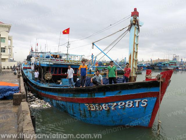 Tàu cá của ngư dân Võ Thế Cường, ở xã Hoài Hải (Hoài Nhơn, Bình Định) xuất bến tại cảng cá Quy Nhơn thẳng tiến ra vùng biển thuộc quần đảo Hoàng Sa để khai thác cá ngừ đại dương