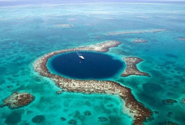 Kết quả hình ảnh cho san hô ở hố xanh Blue Hole