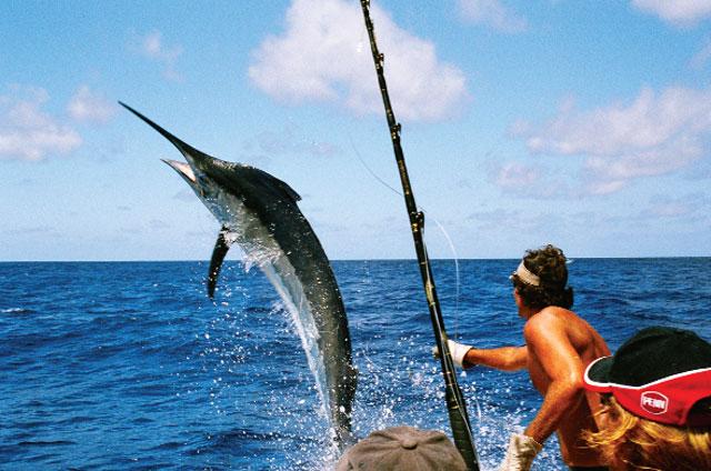 câu cá ở malindi kenya