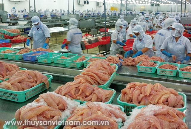 Cá tra, basa của Việt Nam bị áp mức thuế toàn quốc