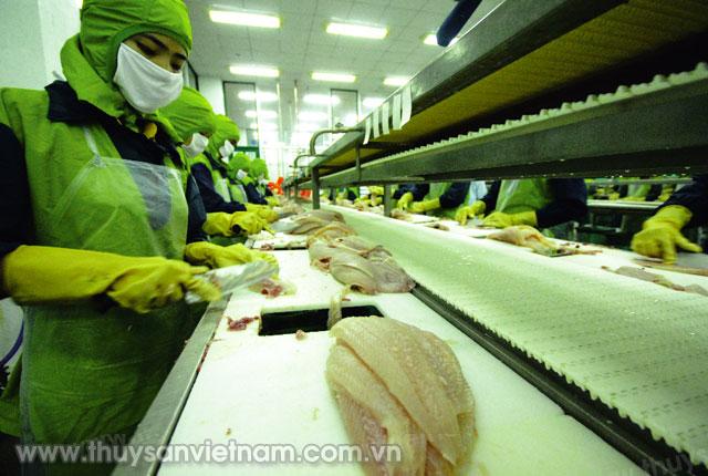 Xuất khẩu thủy sản Việt Nam gặp rào cản ở nhiều thị trường   Ảnh: LHV