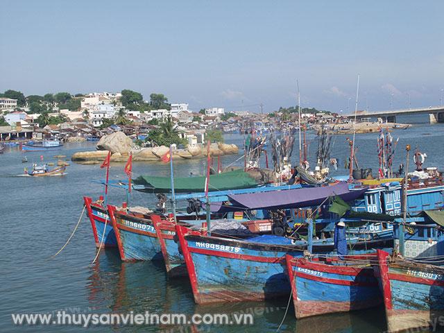 Sử dụng Hệ thống thông tin Nghề cá Việt Nam giảm thiểu rủi ro khi khai thác trên biển