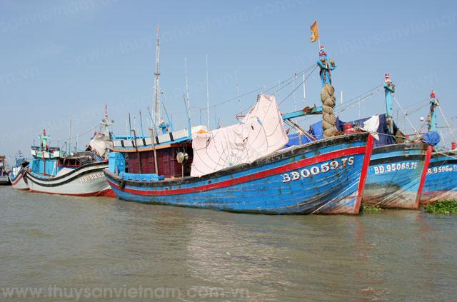 tàu cá bình định tham gia tổ, đội khai thác trên biển