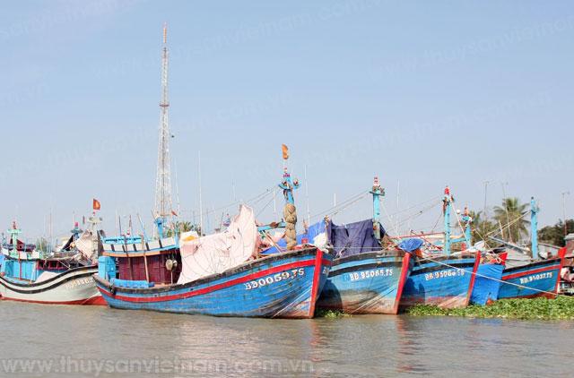 tàu cá bình định