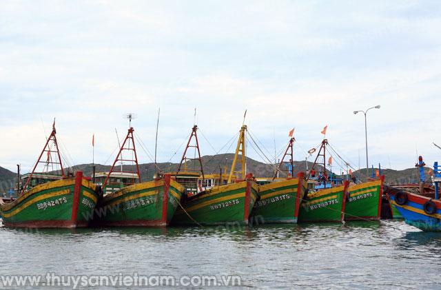 đảm bảo an toàn tàu cá và ngư dân khi hoạt động sản xuất trên biển
