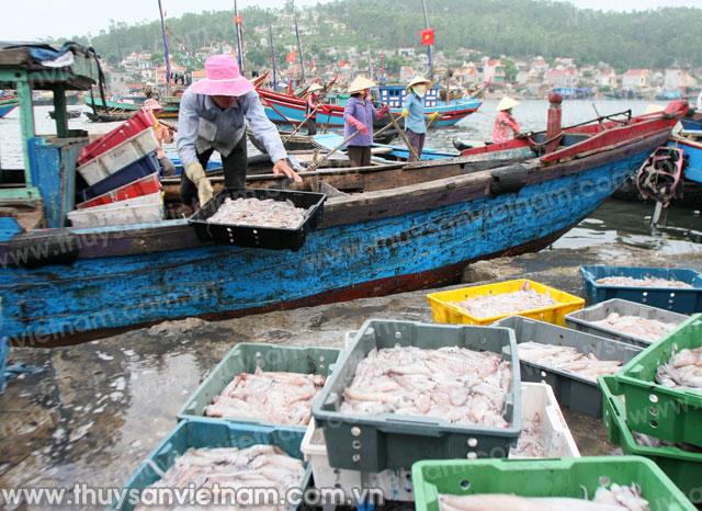 Ngư dân 4 tỉnh miền Trung được hỗ trợ việc khắc phục sự cố môi trường