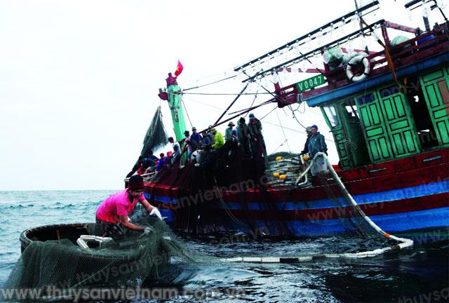 hội nghề cá việt nam tích cực sát cánh với ngư dân trong giai đoạn mới