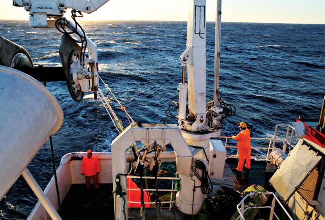 công nghệ sóng siêu âm trong khai thác thủy sản