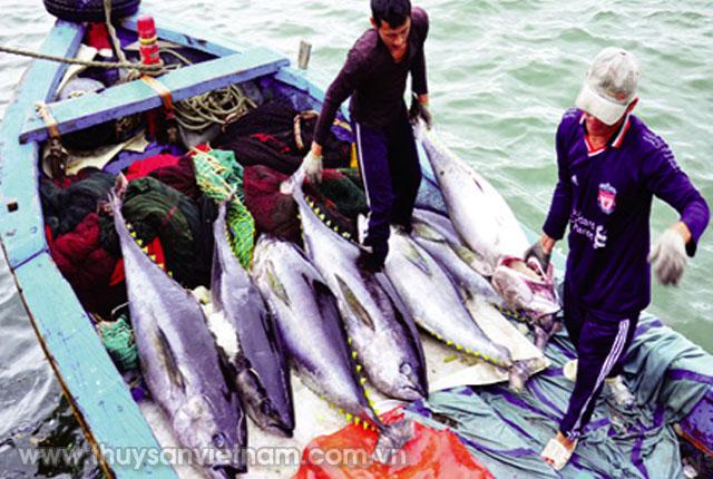 Công ty TNHH Tín Thịnh cam kết thu mua toàn bộ sản phẩm cho ngư dân trong Tổ hợp tác nghề cá Vĩnh Phước