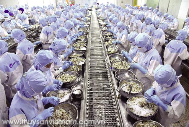 Năm 2018, ngành tôm Việt Nam đặt mục tiêu đạt kim ngạch xuất khẩu 4 tỷ USD Ảnh: PTC