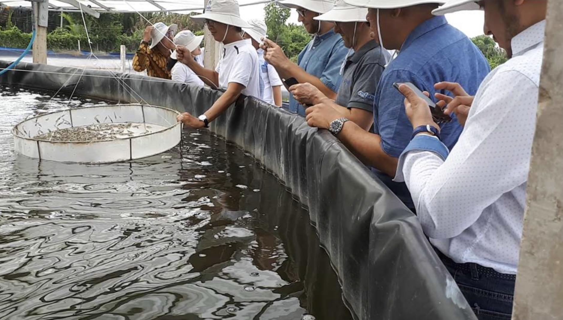 http://thuysanvietnam.com.vn/uploads/article2/baiviet/nuoitrong/270519a2.jpg