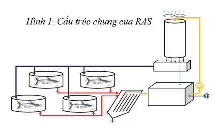 http://thuysanvietnam.com.vn/uploads/article2/baiviet/nuoitrong/cau-truc-chung-cua-ras-02.png