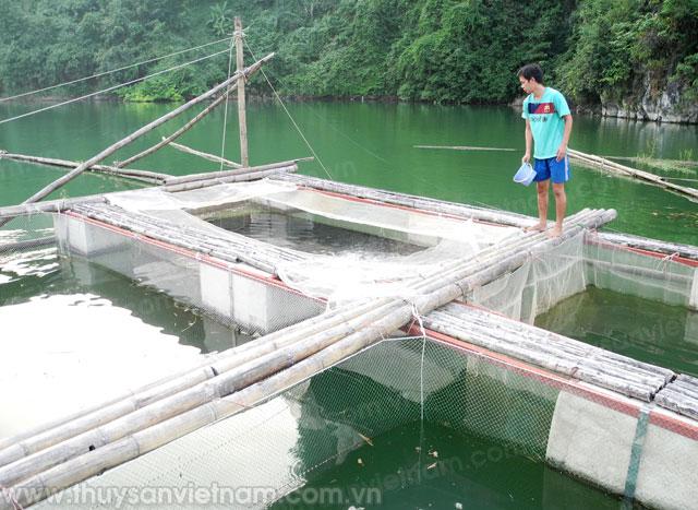 hòa bình nâng cao giá trị gia tăng ngành thủy sản