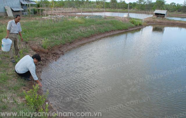 http://thuysanvietnam.com.vn/uploads/article2/baiviet/nuoitrong/web670-.jpg