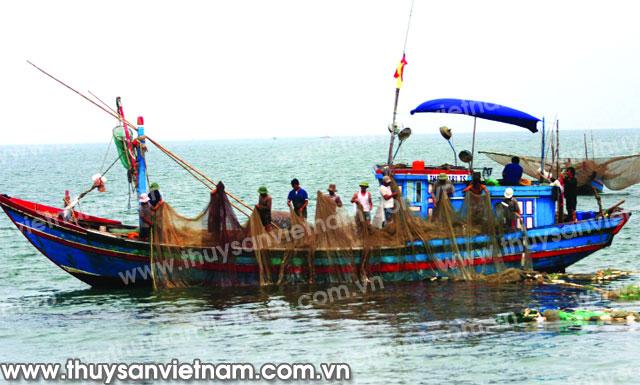 Ngư dân đã bị mất lưới, thiệt hại nặng nề