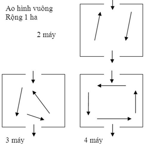 z300-Thuy-san-Viet-Nam3501.jpg