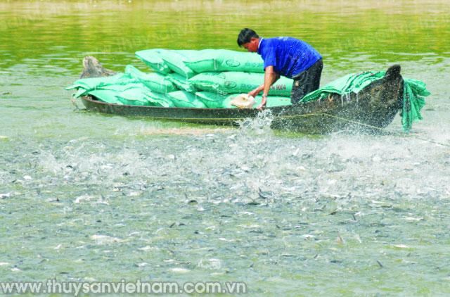 tiền giang phát triển thủy sản theo hướng hàng hóa