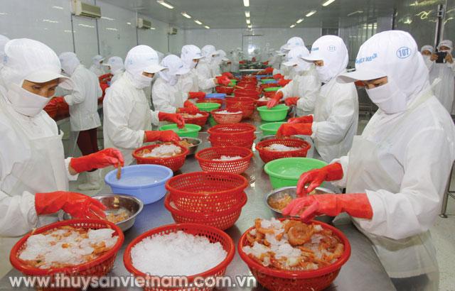 Doanh nghiệp cần tìm hiều thị trường trước khi xuất khẩu - Ảnh: Quang Quyết