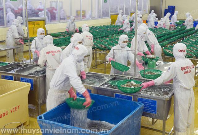 xuất khẩu thủy sản cà mau năm 2015 giảm mạnh