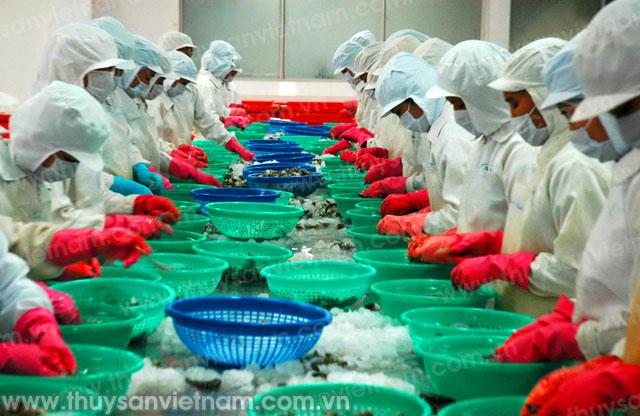 Đảm bảo an toàn thực phẩm trong quá trình chế biến ở các nhà máy