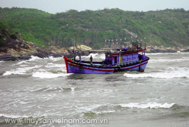 Ngư dân thác thủy sản trên biển