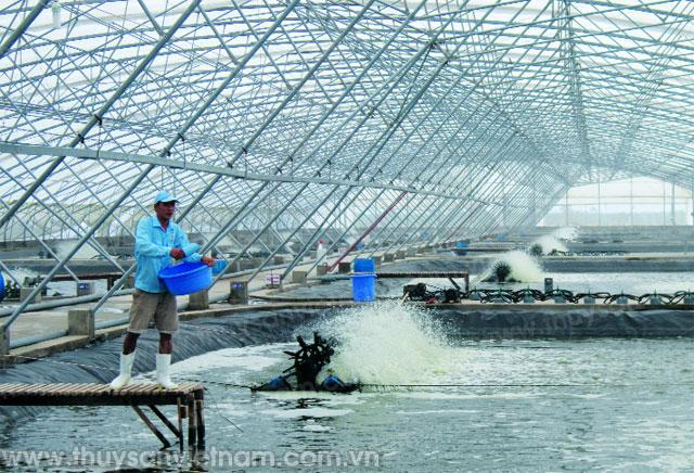 bạc liêu tái cơ cấu ngành thủy sản