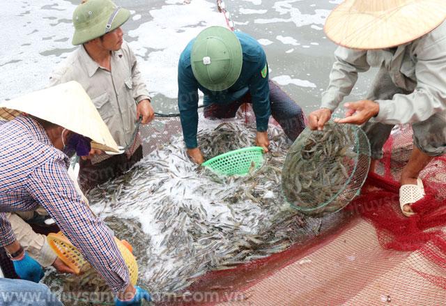 phát triển thủy sản miền Trung