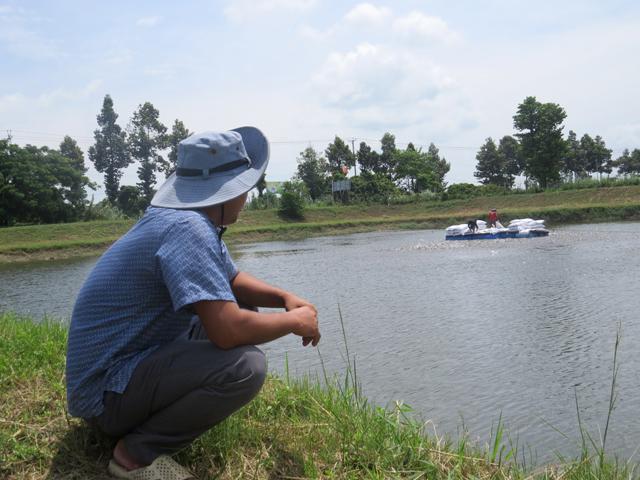 Đồng Tháp: Nuôi cá tra VietGAP giúp giảm giá thành sản xuất