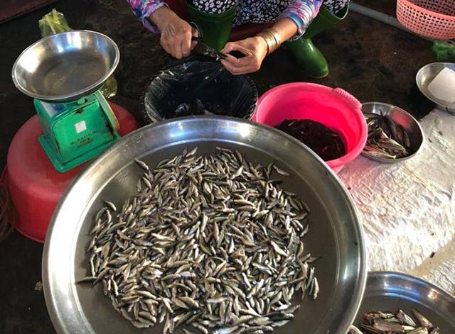 Người bán móc hầu cá linh non để bán