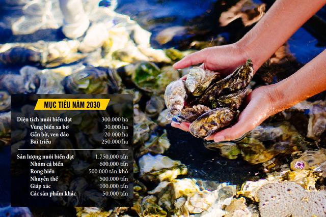 Tháo gỡ thách thức trong nuôi biển