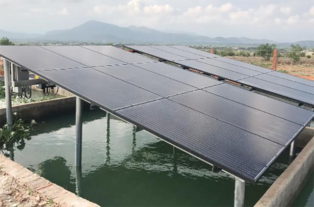 Sử dụng hệ thống năng lượng mặt trời trong ao nuôi tôm – Ảnh: ST